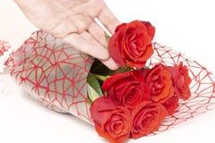 Mão que guarda um ramalhete das rosas em um fundo branco fotografia de stock royalty free