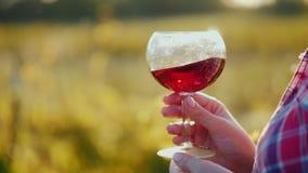 Mão que guarda um vidro do vinho Fora degustação de vinhos vídeos de arquivo