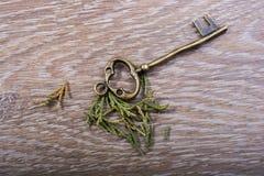 Mão que guarda uma chave decorativa denominada retro Foto de Stock Royalty Free