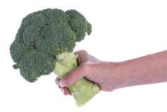 Mão que guarda uma haste dos brócolis Fotografia de Stock Royalty Free