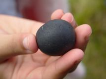 Mão que guarda uma rocha redonda foto de stock royalty free
