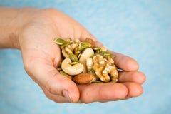 Mão que guarda uma variedade de porcas e sementes Fotografia de Stock Royalty Free