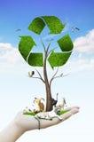 Mão que guardara a árvore como um símbolo do recicl Foto de Stock