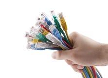 Mão que guardara cabos do Internet Fotos de Stock