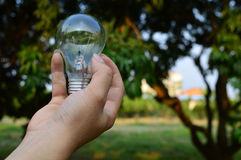 Mão que guardara a lâmpada Foto de Stock