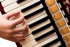 Mão que joga o acordeão Imagem de Stock Royalty Free