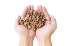Mão que mantém alimentos para animais de estimação isolados no fundo branco, Imagens de Stock