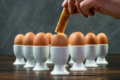 Mão que mergulha o soldado Into Boiled Eggs do brinde em uns copos de ovo em uma aba foto de stock royalty free