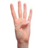 Mão que mostra o número quatro Imagens de Stock
