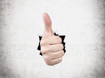Mão que mostra o polegar acima Imagem de Stock