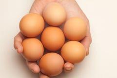 Mão que prende sete ovos imagens de stock royalty free