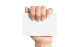 Mão que prende um cartão Imagens de Stock Royalty Free