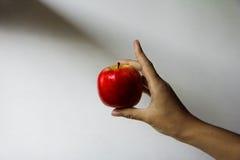 Mão que prende uma maçã fotos de stock royalty free