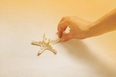 Mão que recolhe a estrela do mar na praia Conceito das férias de verão ou Imagem de Stock