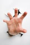 Mão que tenta agarrar fotografia de stock royalty free