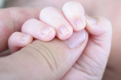 Mão recém-nascida Fotografia de Stock