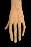 Mão resistida da boneca Foto de Stock Royalty Free