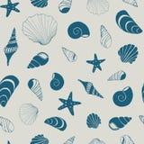 A mão sem emenda náutica do vetor da concha do mar e da estrela do mar tirada tamborila ilustração royalty free