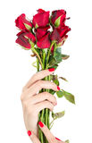 A mão 'sexy' da mulher com vermelho prega um grupo das rosas Imagens de Stock Royalty Free