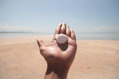 Mão & Shell Imagem de Stock