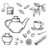 A mão tirada esboçou a ilustração do chá ilustração stock