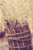 Mão - vaso feito Foto de Stock