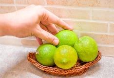 Mão verde dos limões imagens de stock royalty free