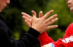 Mãos Imagem de Stock Royalty Free