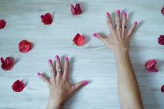 Mãos abertas com os pregos pintados entre as pétalas imagem de stock royalty free