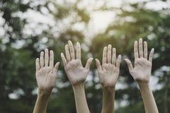 Mãos acima da fêmea na natureza do jardim e no fundo do por do sol para votar, conceito dos trabalhos de equipe fotos de stock