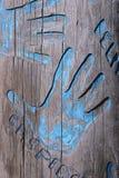 Mãos azuis Imagens de Stock