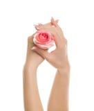 Mãos bonitas imagem de stock royalty free