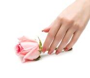 Mãos bonitas Fotografia de Stock
