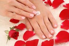 Mãos bonitas Foto de Stock