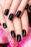 Mãos bonitas das mulheres com tratamento de mãos preto Foto de Stock