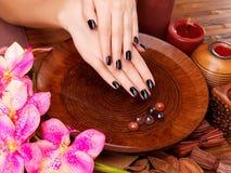 Mãos bonitas das mulheres com tratamento de mãos preto Fotografia de Stock