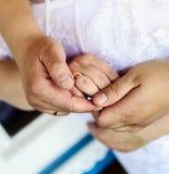 Mãos com anéis de casamento imagem de stock