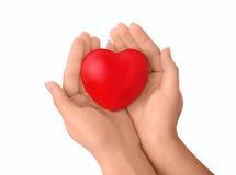 Mãos com coração Fotografia de Stock