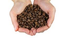 Mãos com feijões de café Fotografia de Stock