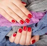 Mãos com os pregos manicured vermelho Fotos de Stock