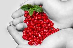 Mãos com sementes da romã Foto de Stock Royalty Free