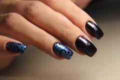Mãos com tratamento de mãos bonito Fotografia de Stock