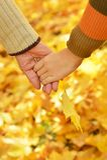 Mãos contra as folhas caídas Imagem de Stock