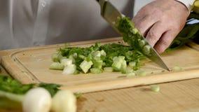 Mãos da cozinha grande da faca do cozinheiro cebolas verdes frescas de uma pena em uma placa de desbastamento de uma árvore filme