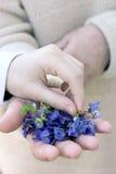 Mãos da criança e da mulher com flores azuis Fotografia de Stock Royalty Free
