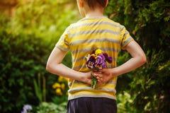 Mãos da criança que guardam uma flor dos pansies do ramalhete Vista traseira Foco para flores Fotos de Stock