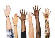 Mãos da diversidade levantadas acima do gesto imagem de stock royalty free
