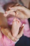 Mãos da mãe que guardam maciamente os pés de um bebê minúsculo Fotos de Stock Royalty Free