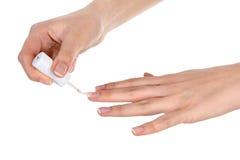 Mãos da mulher Fotografia de Stock