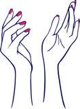 Mãos da mulher ilustração royalty free